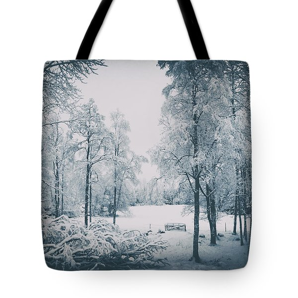 Old Vintage Winter Landscape Tote Bag