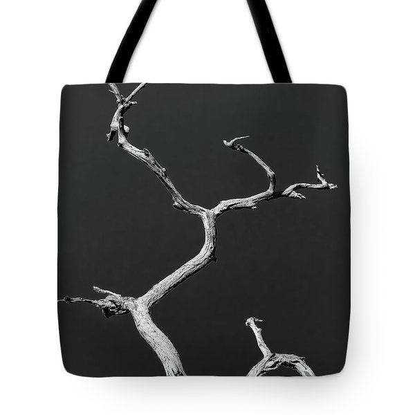 Old Wood I Tote Bag