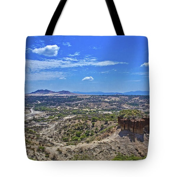 Tote Bag featuring the photograph Olduvai Gorge - The Cradle Of Mankind by Pravine Chester