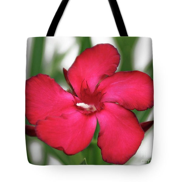 Tote Bag featuring the photograph Oleander Blood-red Velvet 1 by Wilhelm Hufnagl