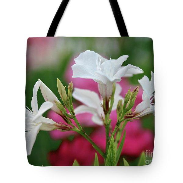 Oleander Casablanca 1 Tote Bag