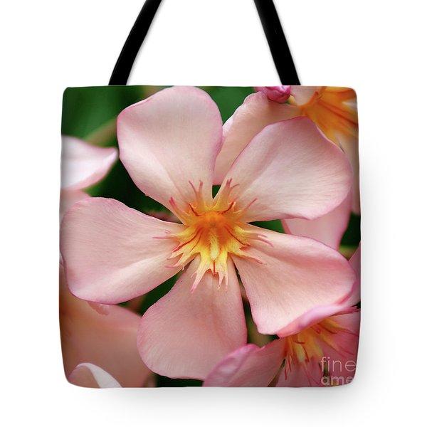 Oleander Dr. Ragioneri 1 Tote Bag