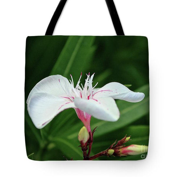 Oleander Harriet Newding  1 Tote Bag