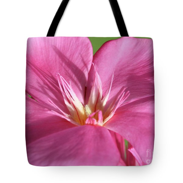 Oleander Maresciallo Graziani 3 Tote Bag
