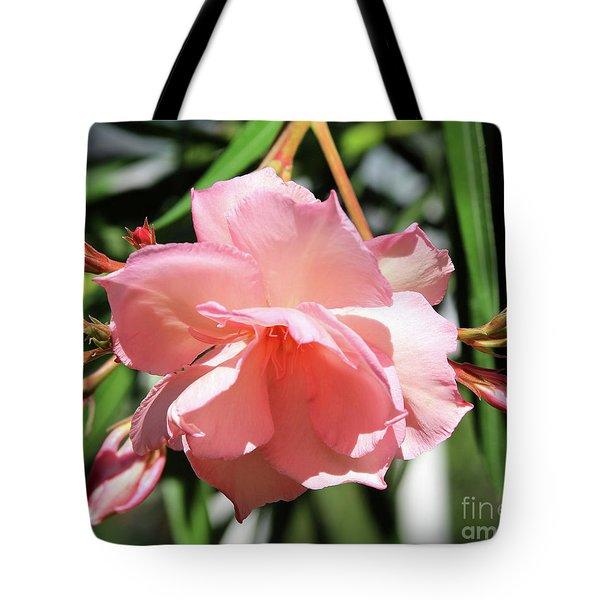 Oleander Mrs. Roeding 3 Tote Bag