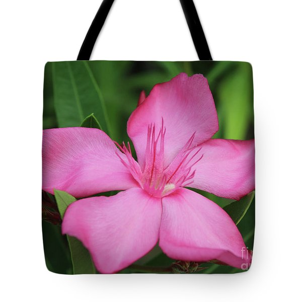 Oleander Professor Parlatore 2 Tote Bag