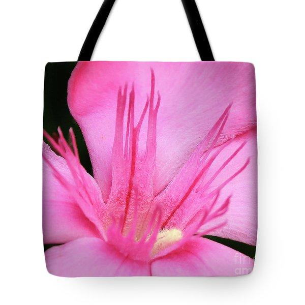 Oleander Professor Parlatore 3 Tote Bag