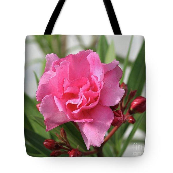 Oleander Splendens Giganteum 1 Tote Bag