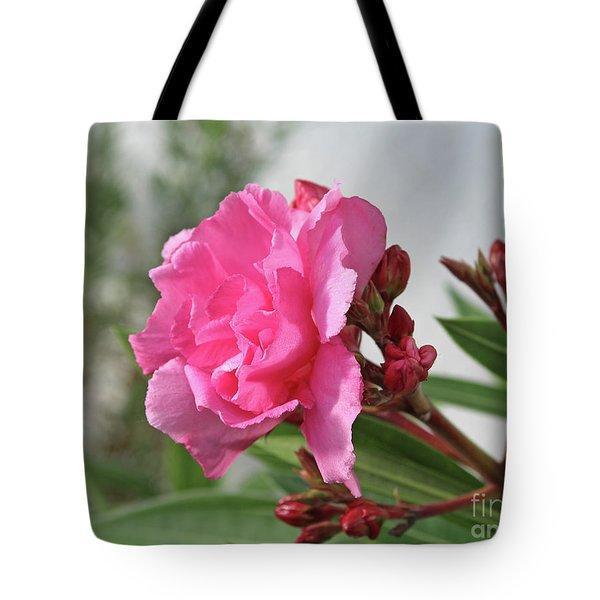 Oleander Splendens Giganteum 4 Tote Bag