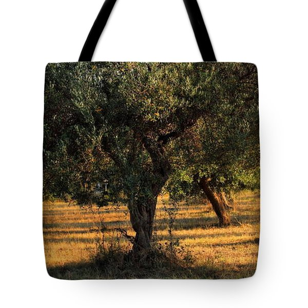 Olive Grove 3 Tote Bag