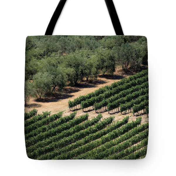 Olive Grove Meets Vineyard Tote Bag