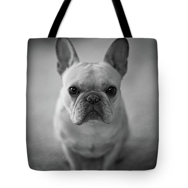 Tote Bag featuring the photograph Olive by Lucian Capellaro