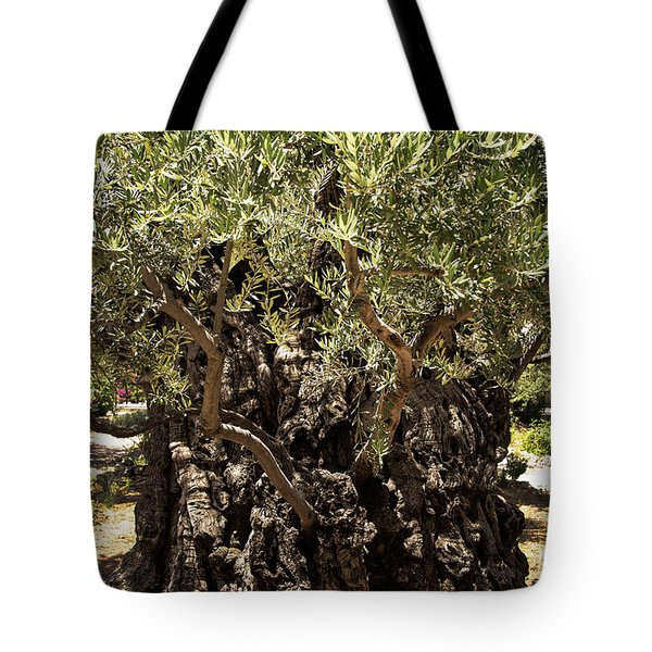 Tote Bag featuring the photograph Olive Tree by Mae Wertz