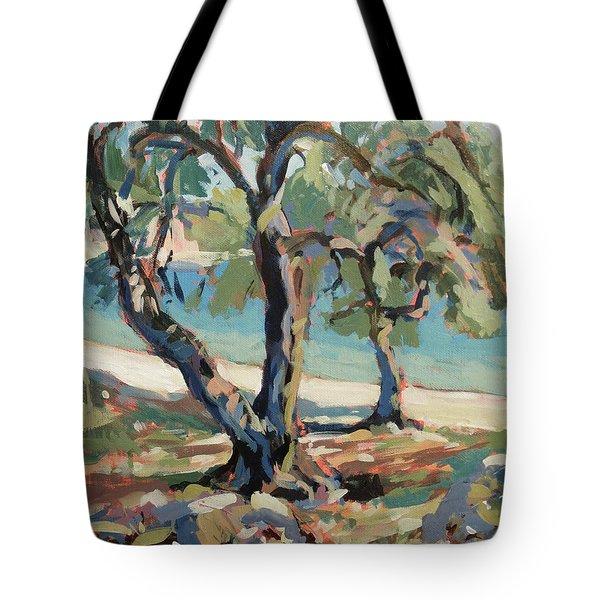 Olive Trees Along Marmari Beach Paxos Tote Bag