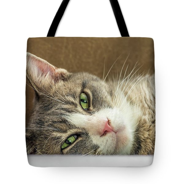 Oliver Tote Bag by Irwin Seidman