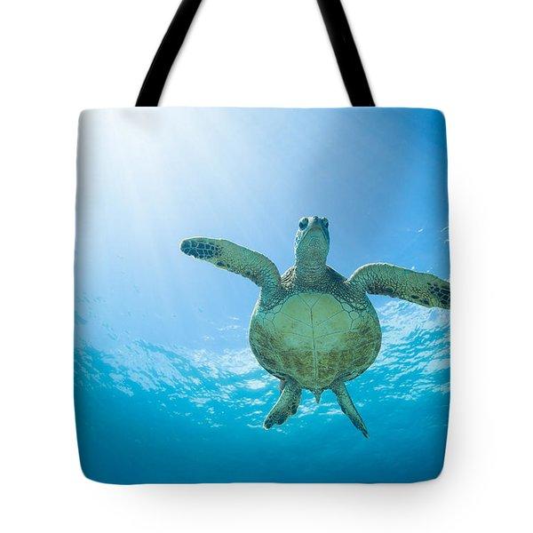 Olowalu Honu  Tote Bag