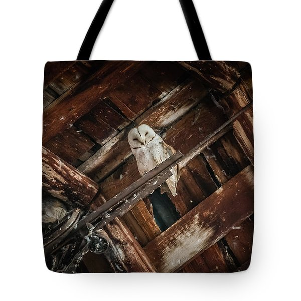 Tote Bag featuring the photograph Olsen Barn Owls by Jan Davies