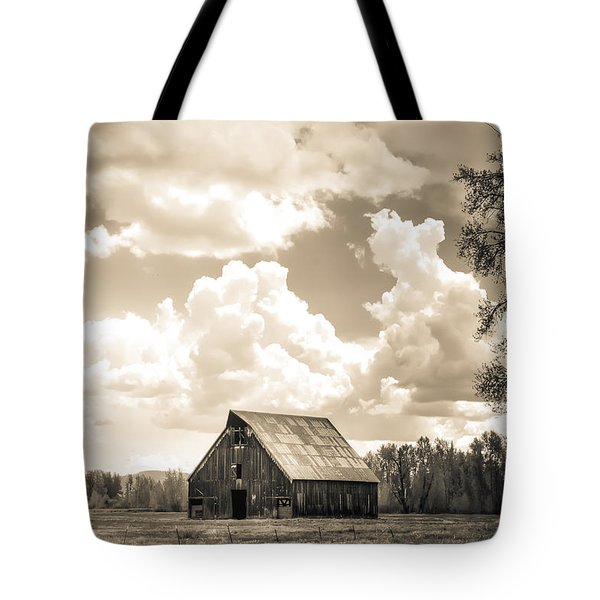 Tote Bag featuring the photograph Olsen Barn Thunderstorm by Jan Davies