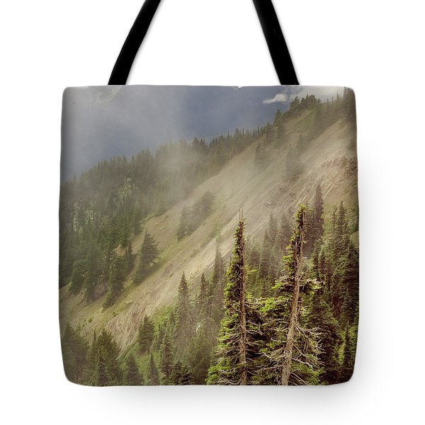 Tote Bag featuring the photograph Olympic Range From Hurricane Ridge by Peter J Sucy