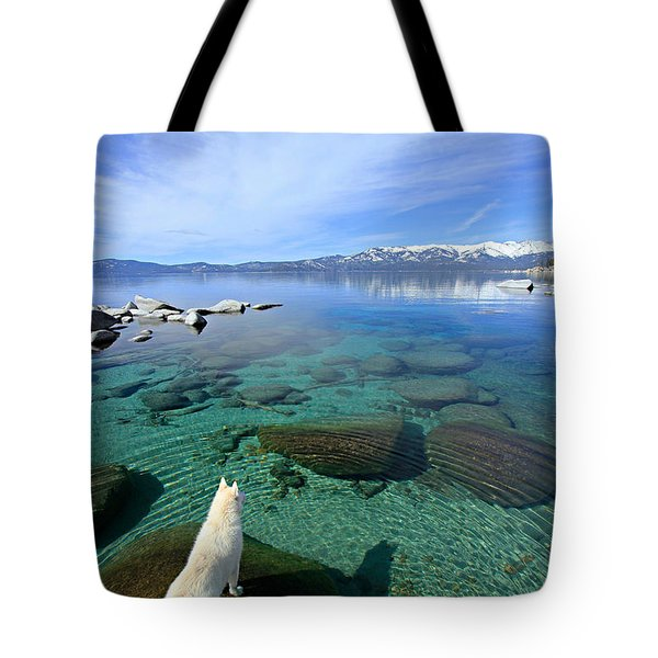 Tote Bag featuring the photograph  On A Clear Day You Can See Forever by Sean Sarsfield