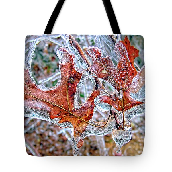 On A Cold Day Tote Bag