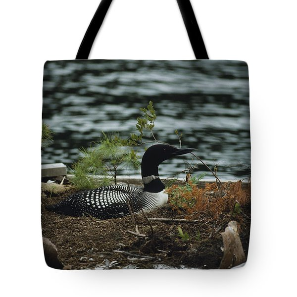 On A Floating Nesting Island, A Loon Tote Bag