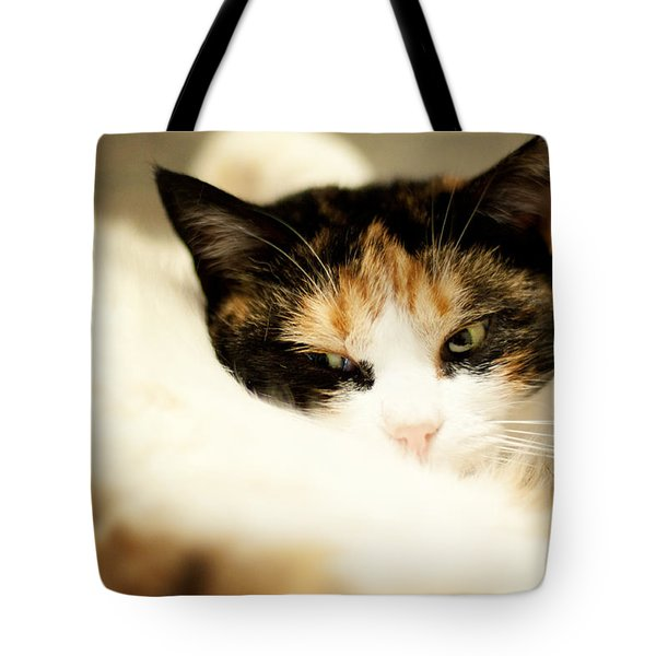 Tote Bag featuring the photograph On A Furry Pillow by Laura Melis