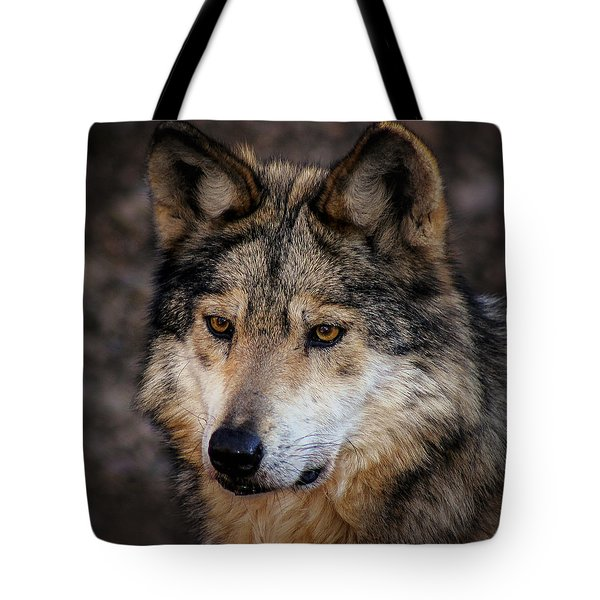 Tote Bag featuring the photograph On Alert by Elaine Malott