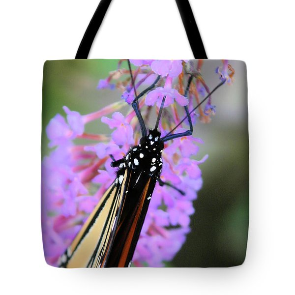 On An Angle Tote Bag by Karol Livote