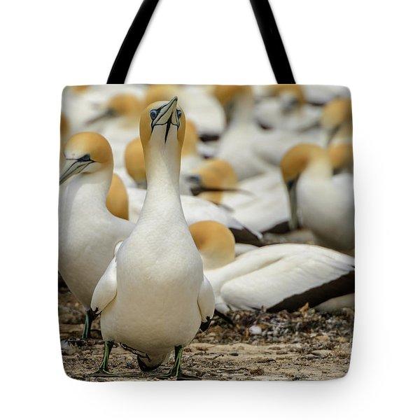 On Guard Tote Bag