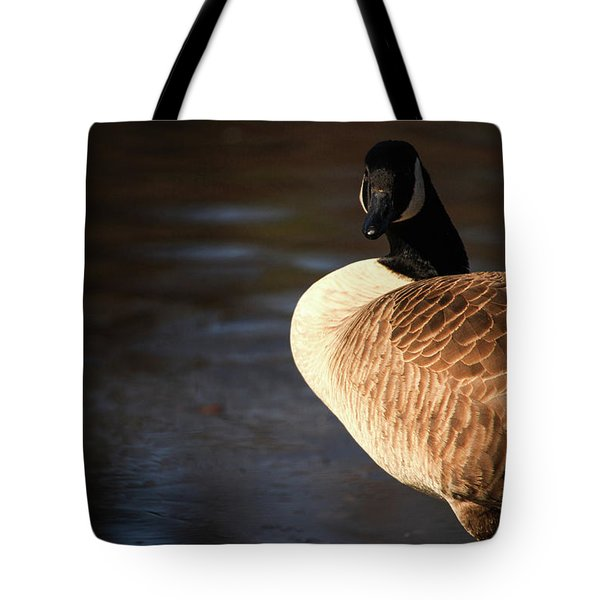 Tote Bag featuring the photograph On Ice by Karol Livote