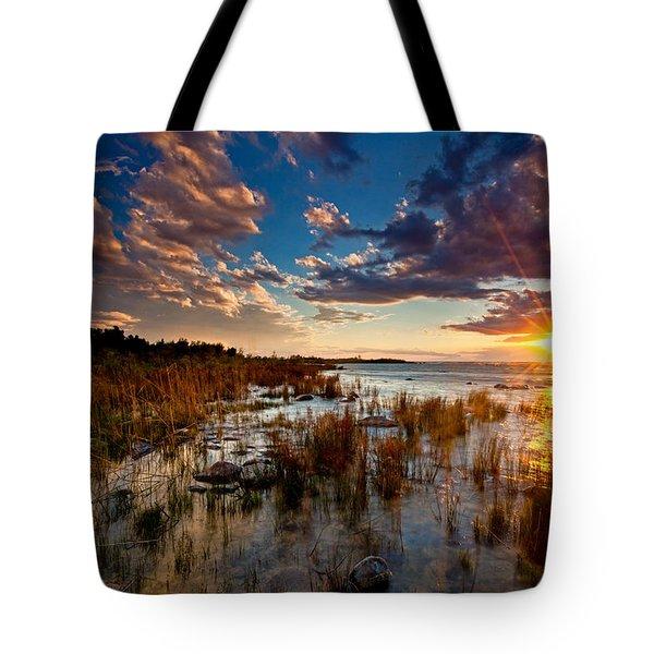 On Lake Michigan's Shore Tote Bag