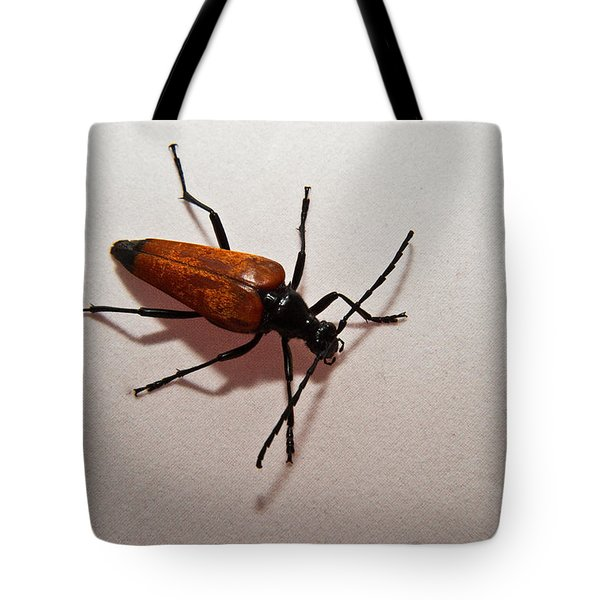 On My Way Tote Bag