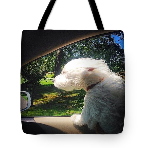 Trip To The Groomer Tote Bag
