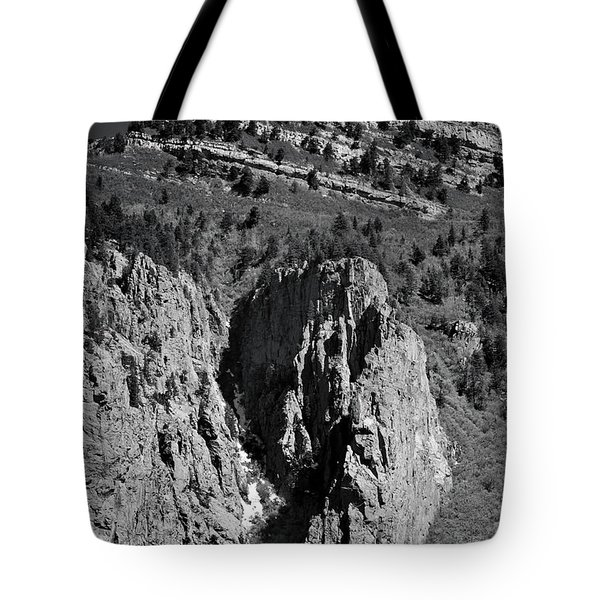 Tote Bag featuring the photograph On Sandia Mountain by Ron Cline