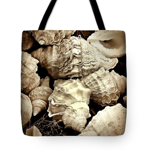 On The Beach - Shells In Sepia Tote Bag