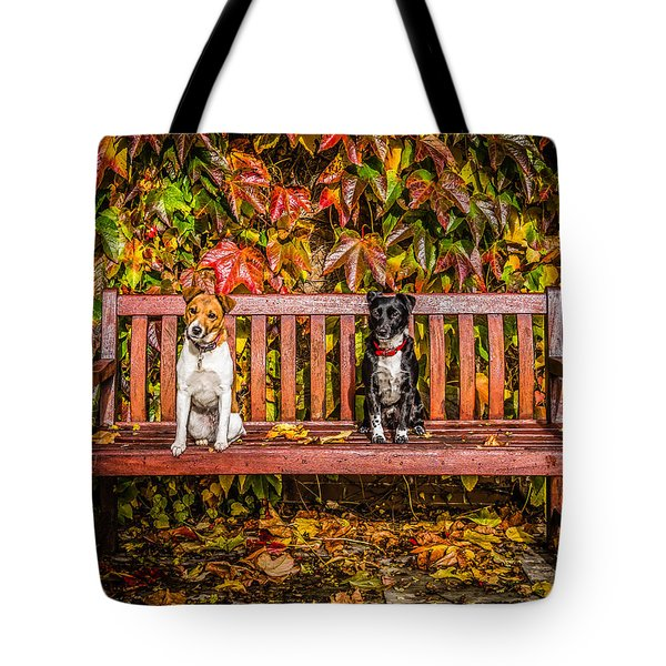On The Bench Tote Bag