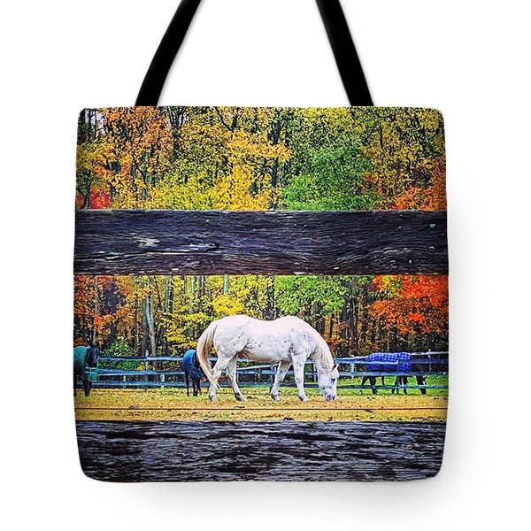 Fall Foliage Horse Tote Bag