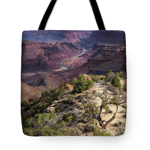 Looking Out The Front Door Tote Bag