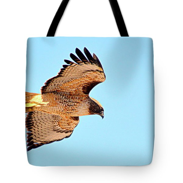 Tote Bag featuring the photograph On The Hunt by AJ Schibig