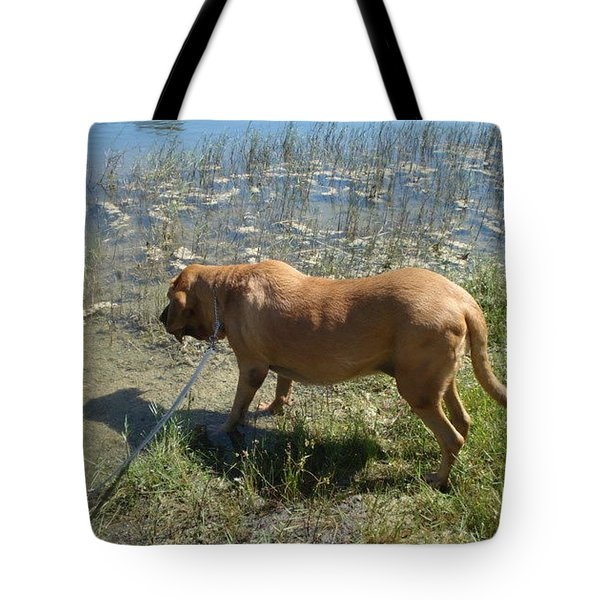 On The Hunt Tote Bag by Val Oconnor