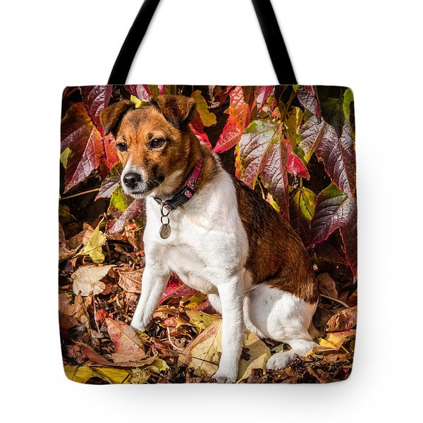 On The Leaves Tote Bag