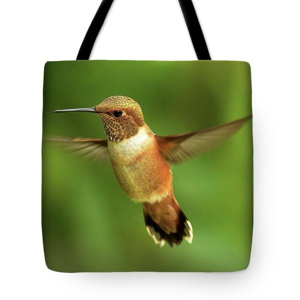 On The Lookout Tote Bag by Sheldon Bilsker