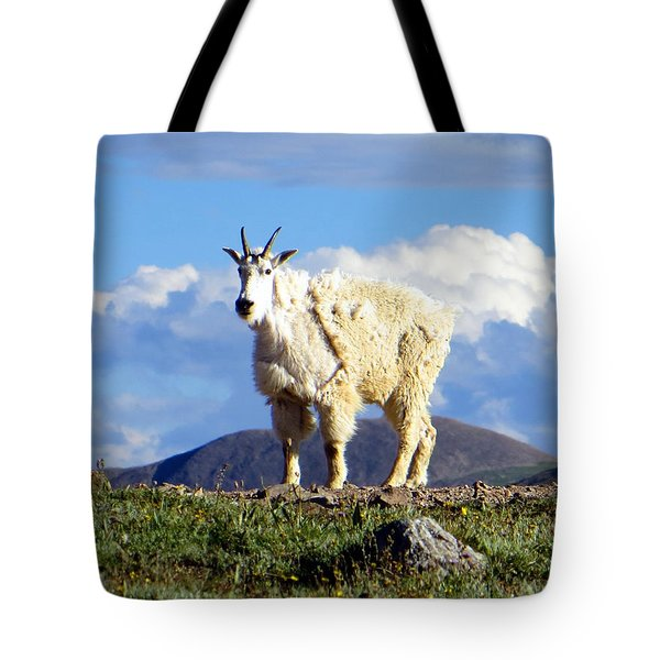 On The Mountain Top Tote Bag by Karen Shackles