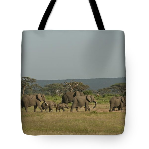 Tote Bag featuring the photograph On The Move by Gary Hall