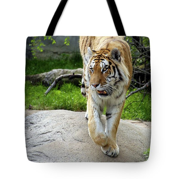 On The Prowl Tote Bag by Gordon Dean II