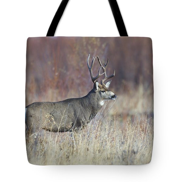 On The River Bank Tote Bag