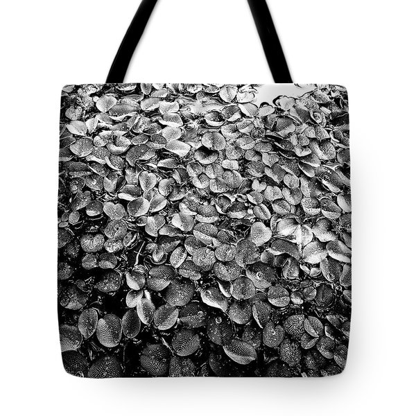 On The Surface Tote Bag