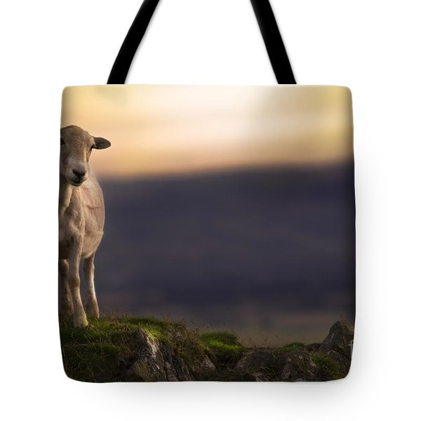 On The Top Of The Hill Tote Bag
