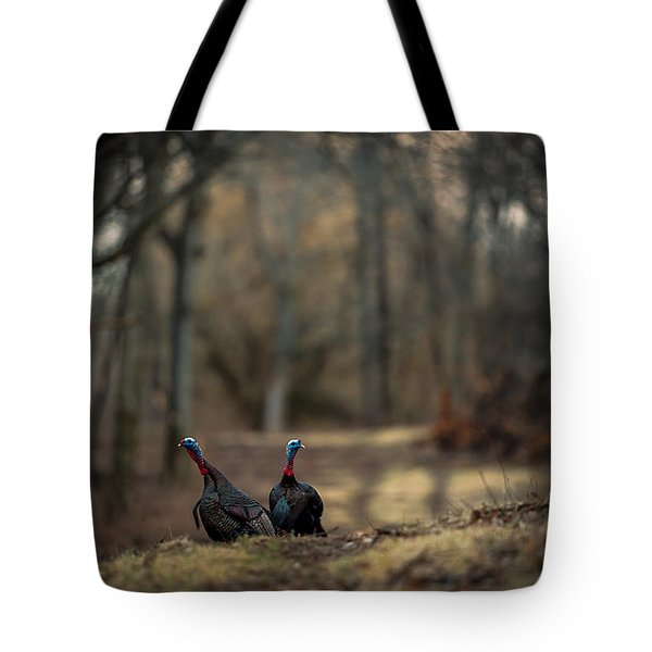On The Woodlot Path Tote Bag